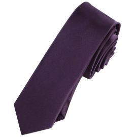 Mens Grape Eggplant Skinny Tie