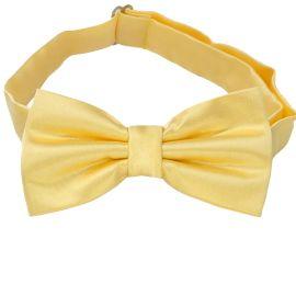 light gold bow tie