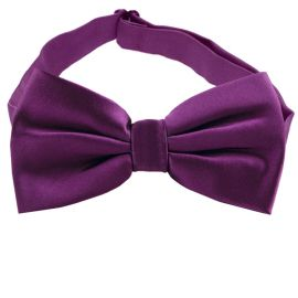 Plum Grape Purple Bow Tie