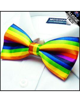 Rainbow Multi-Coloured Bow Tie