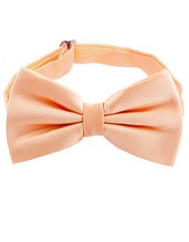 Peach Apricot Bow Tie