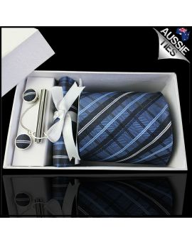 Blue and White Plaid Tie Set