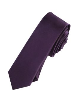 Mens Grape Eggplant Skinny Tie