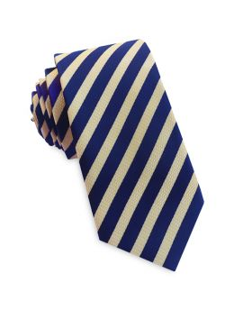 Light Gold Textured & Midnight Stripes Slim Tie