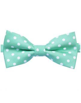 mint green polka dot bow tie