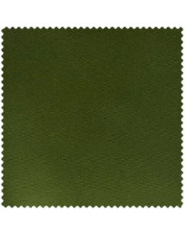 Olive Green Swatch