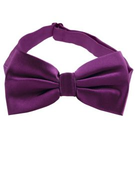 Plum Grape Purple Bow Tie