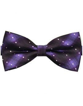 Purple with Dark Purple Stripes & White Polka Dots Bow Tie