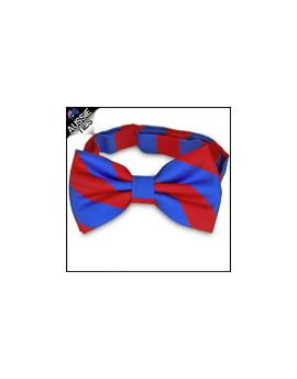 Mens Red & Blue Stripes Bow Tie