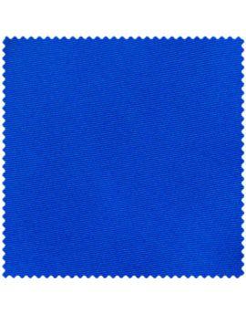 Royal Blue Swatch