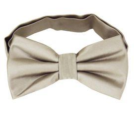 Mens Platinum White Gold Bow Tie