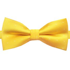 yellow with polka dots bow tie